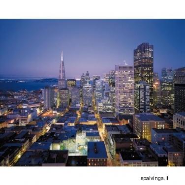 Fototapetai SAN FRANCISCO 254 x 368 cm VENA