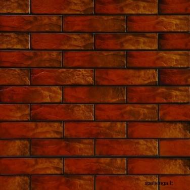 Fasado plokštė RUSTIKO COLOR 245X65X6.5  (0,5 m2)