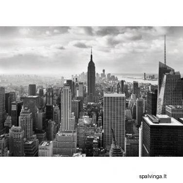 Fototapetai NEW YORK BLACK&WHITE 254 x 368 cm