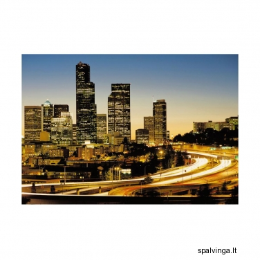 Fototapetai CITY LIGHTS 8-916 254 x 368 cm VENA