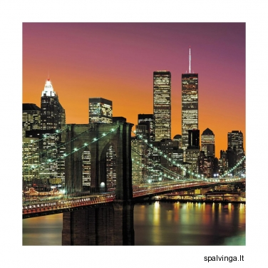 Fototapetai NEW YORK 366x254 cm