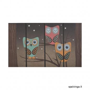 Durų kilimėlis OWL 45,5 x 76 cm INSPIRE