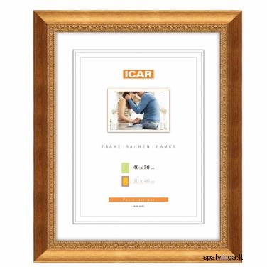 Plastikinis fotografijų rėmelis WERA EXW-A, auksinis