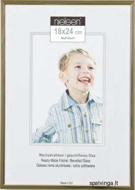 Aliumininis fotografijų rėmelis BASIC 21, auksinis